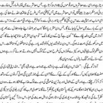 These Few People (An Article by Orya Maqbool Jan)