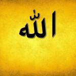 ALLAH ka Wada Momin Sy Hy, Muslaman Sy Nhi…